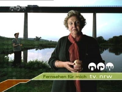 Fréquence TV Novo Tempo São Paulo tv تردد قناة